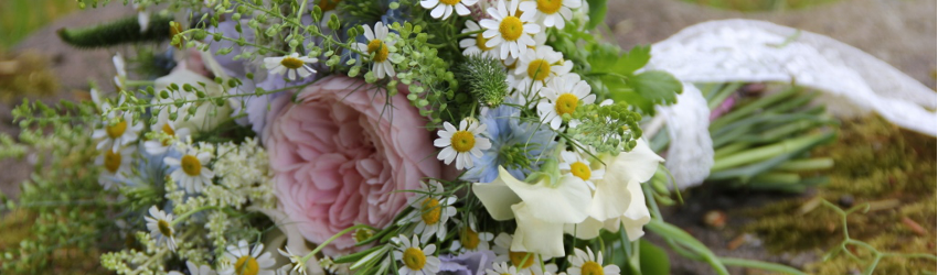 Le bonheur des fleurs