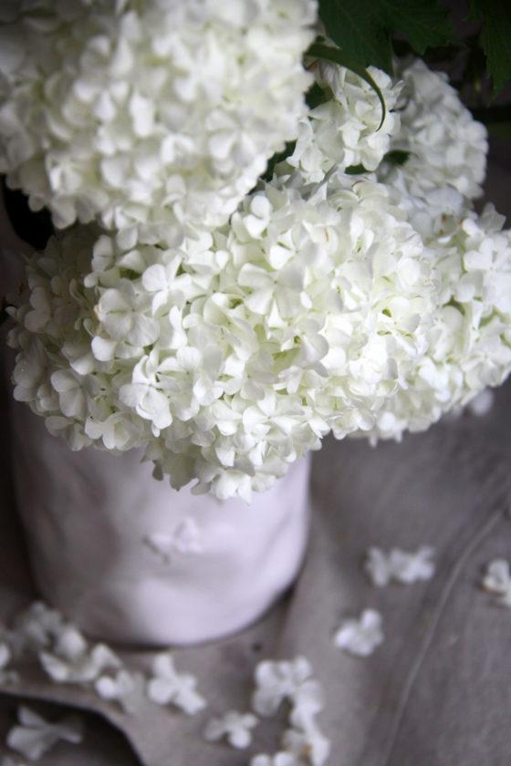 Bouquet tout blanc - Atelier floral - La Saladelle - Perpignan